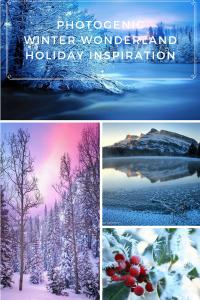 Holiday Inspiration