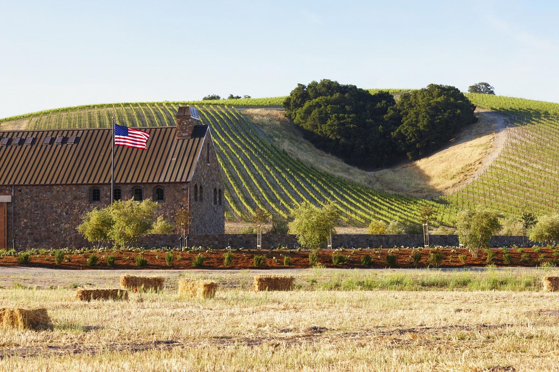 Niner Wine Estates: Winemaking with heart - San Luis Obispo County ...