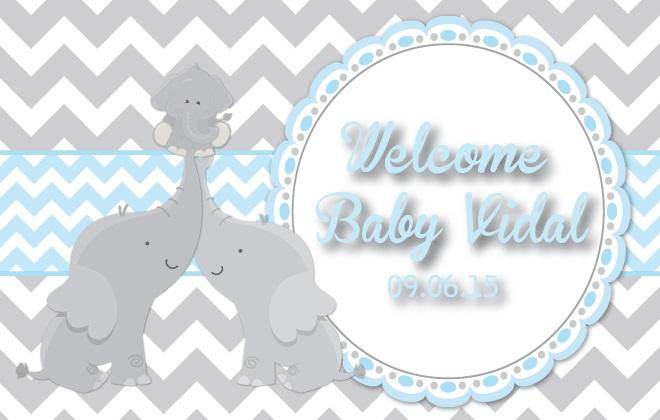 BabyVidal-V1