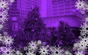 Rosslyn Purple at Gateway Park