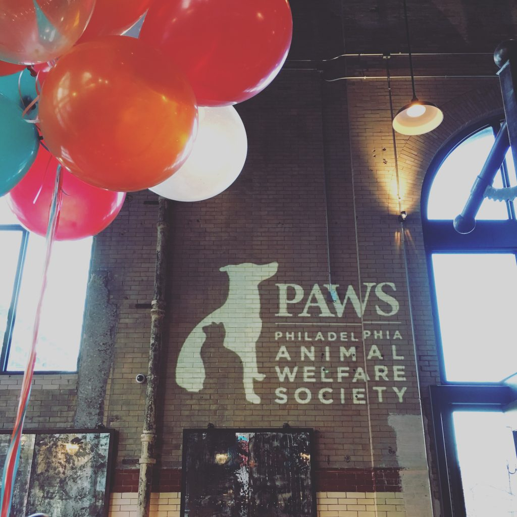 ShutterBooth Philadelphia PAWS is 10!